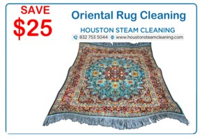 25 dollars off oriental rug cleaning
