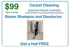 only 99 dollars for 3 bedroom steam clean