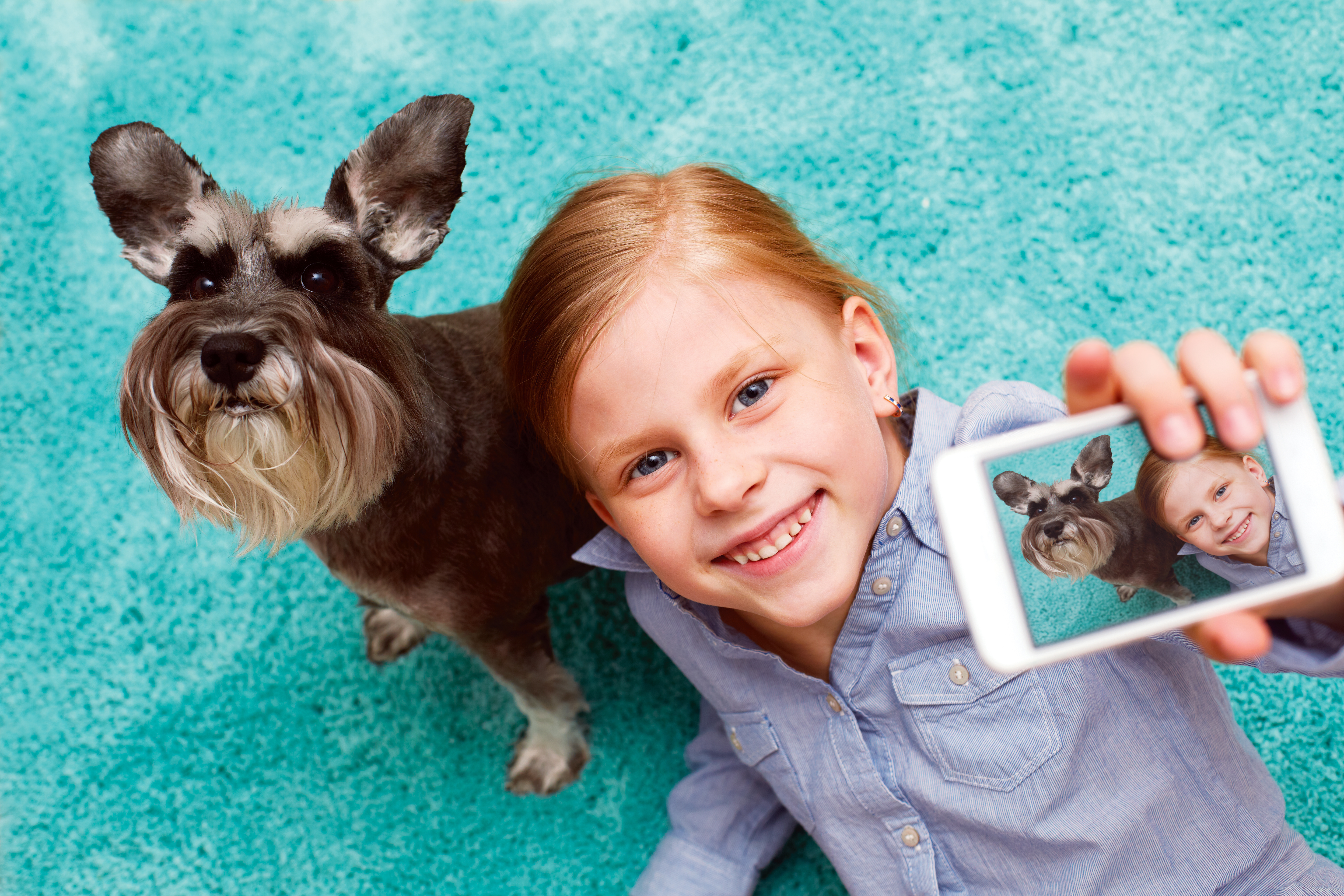 Pet Odor Amp Stains Removal Houston Indoor Air Duct Cleaning